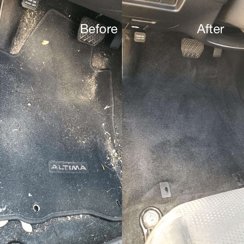 Interior Carpet Cleaning